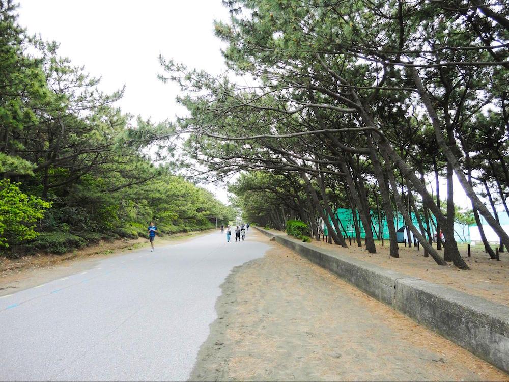 稲毛海浜公園6