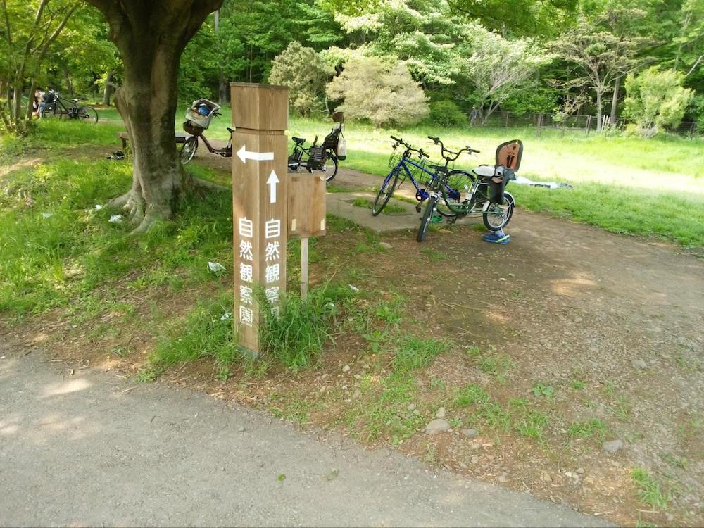 野川公園12
