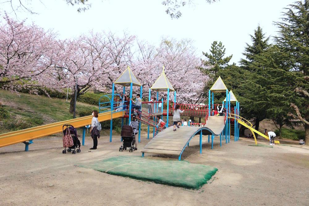 大池公園6