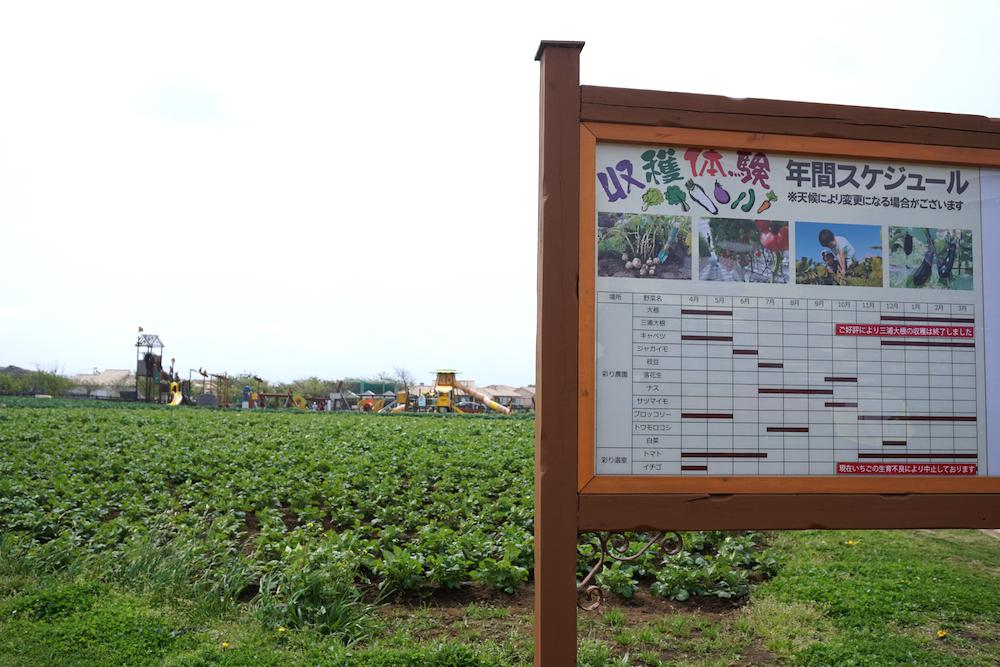 長井海の手公園3
