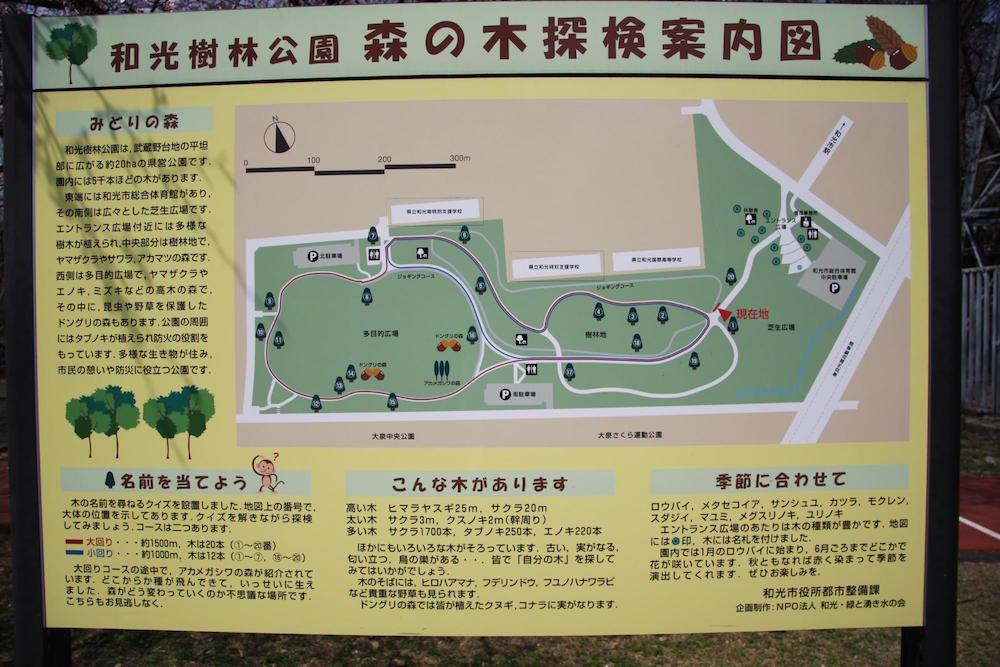 和光樹林公園7