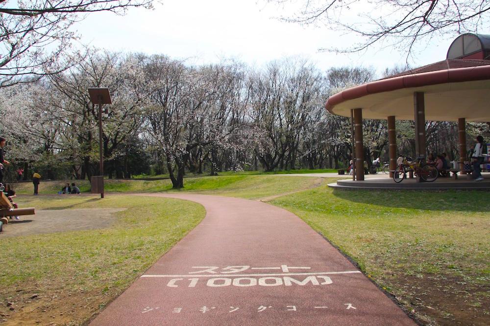 和光樹林公園9
