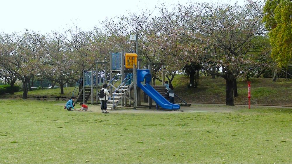 百目木公園12
