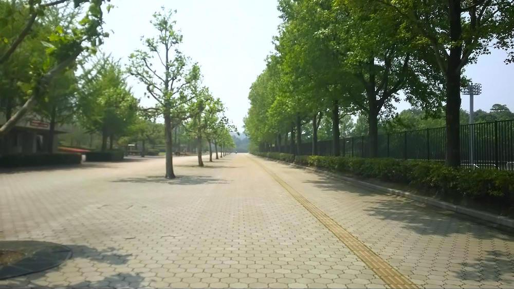 布勢総合運動公園5