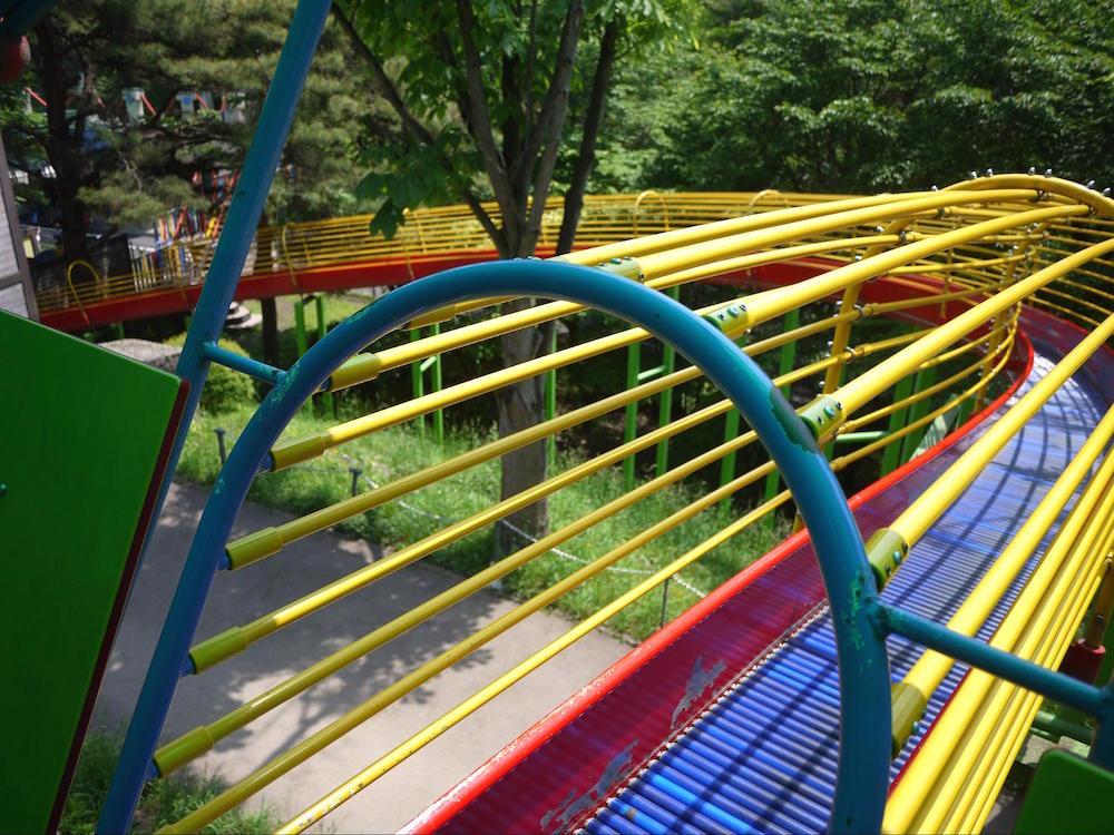 八幡山公園11