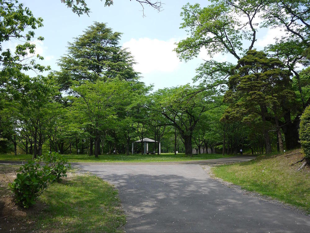 八幡山公園2