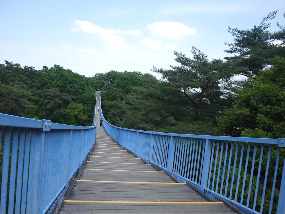 八幡山公園4