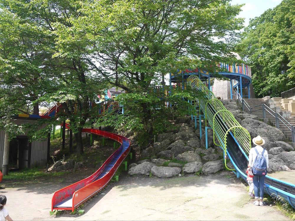 八幡山公園9