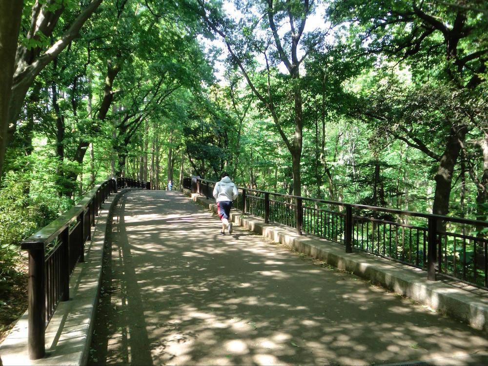 林試の森公園10