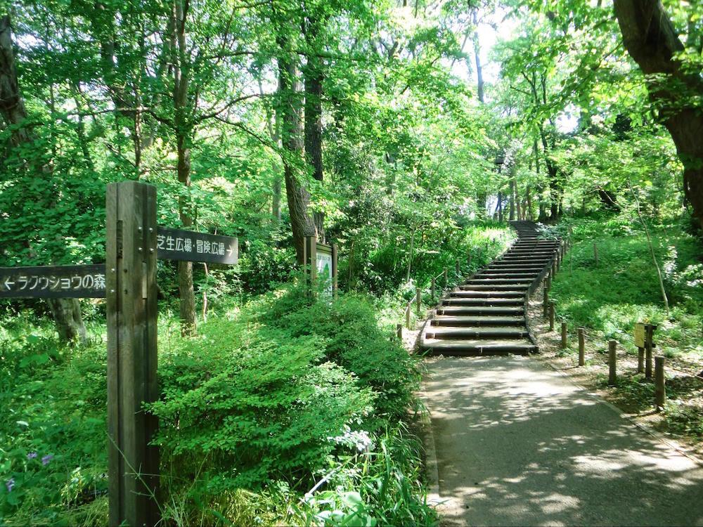 林試の森公園2