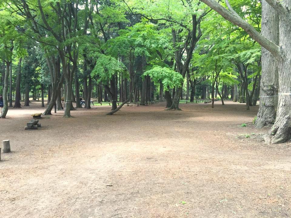 井の頭恩賜公園7
