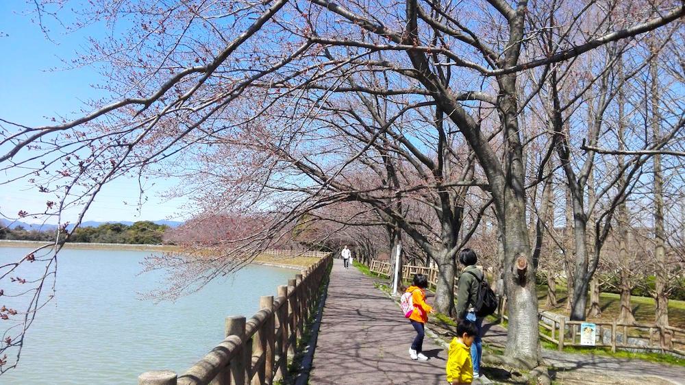石垣池公園13