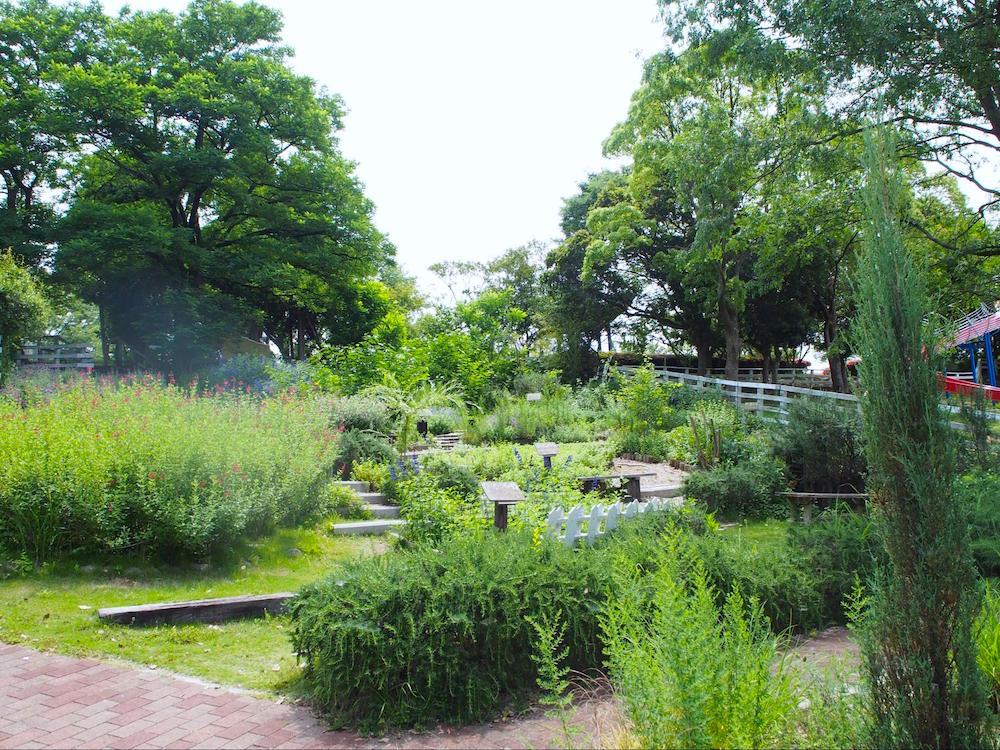 石ヶ谷公園6