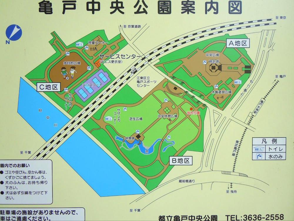 亀戸中央公園1