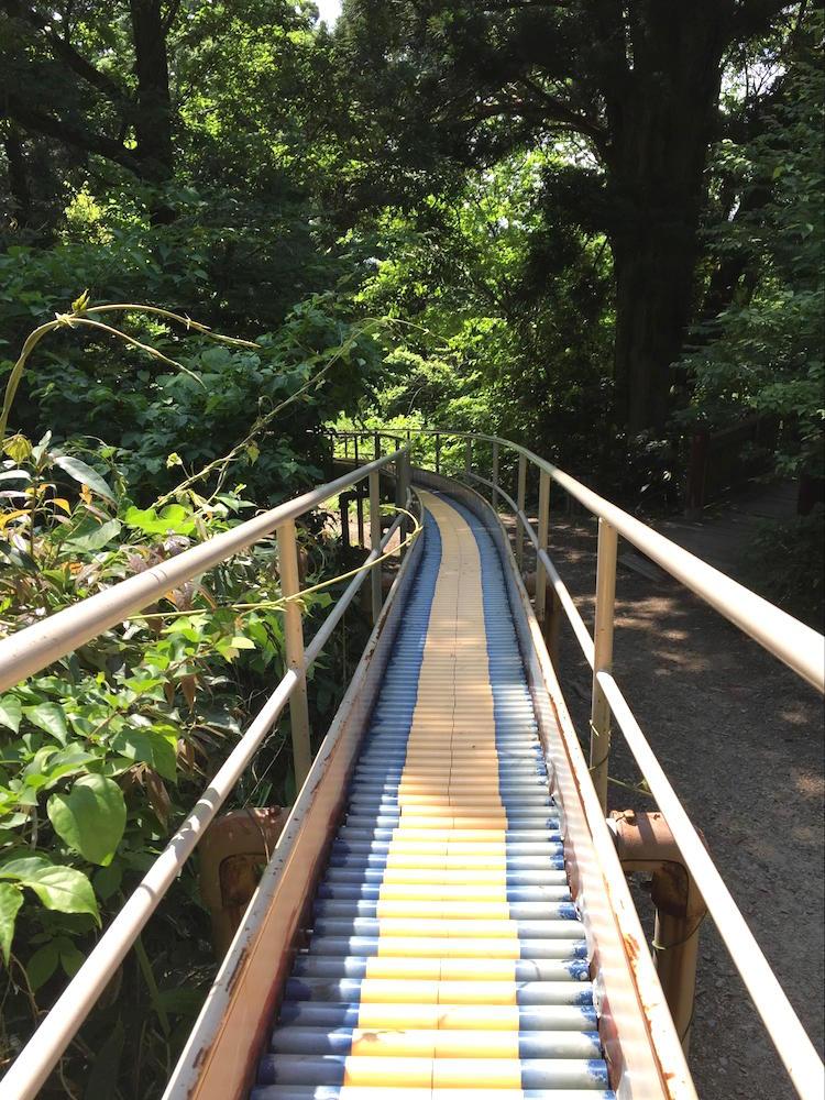 加茂山公園4