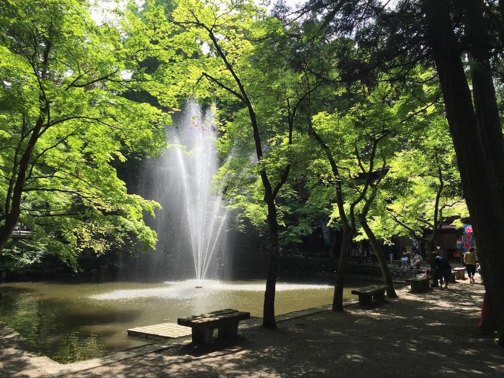 加茂山公園6