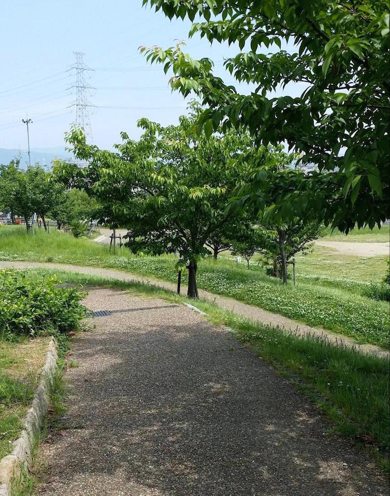 車塚公園12