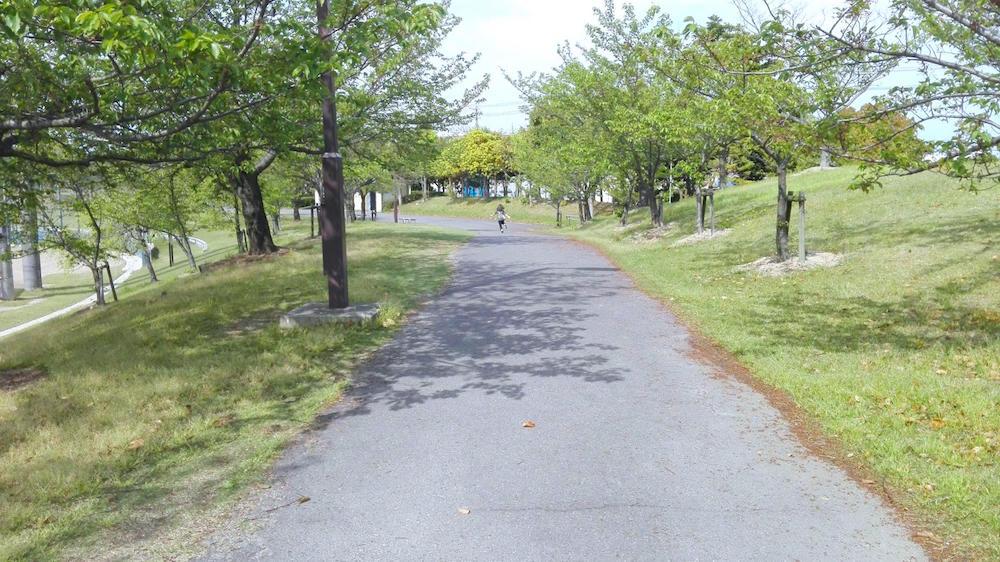 楠中央緑地公園4