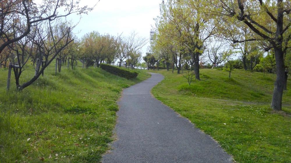 楠中央緑地公園7