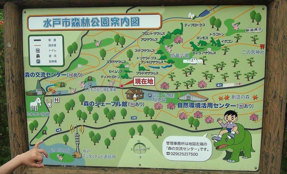 水戸市森林公園2
