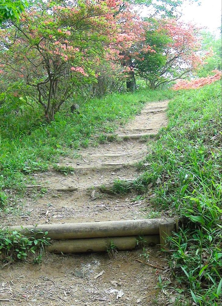 水戸市森林公園4