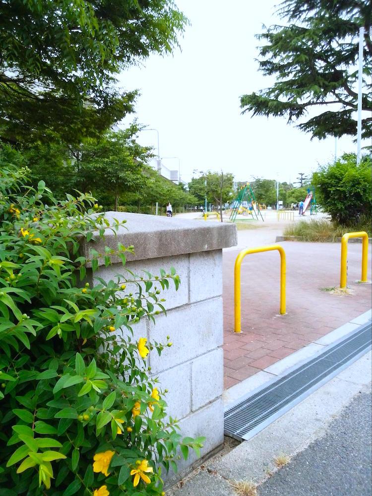 長池公園8