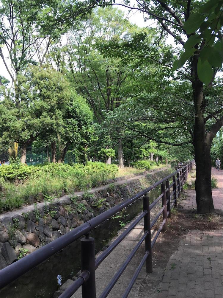中原平和公園5