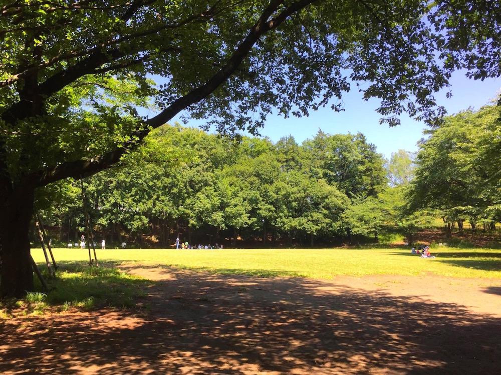 鶴間公園2
