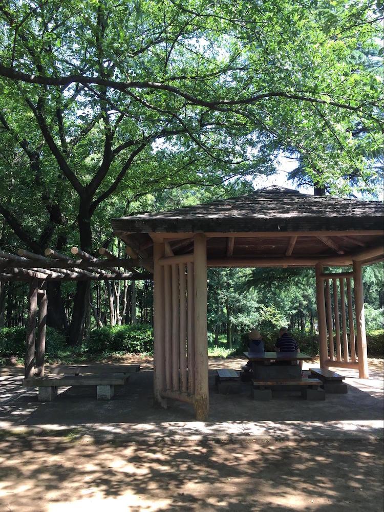 鶴間公園7