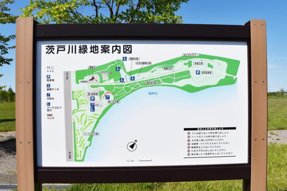 茨戸川緑地