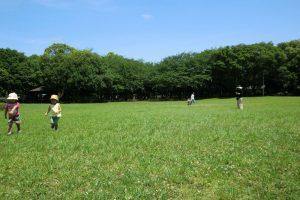 千葉県立行田公園