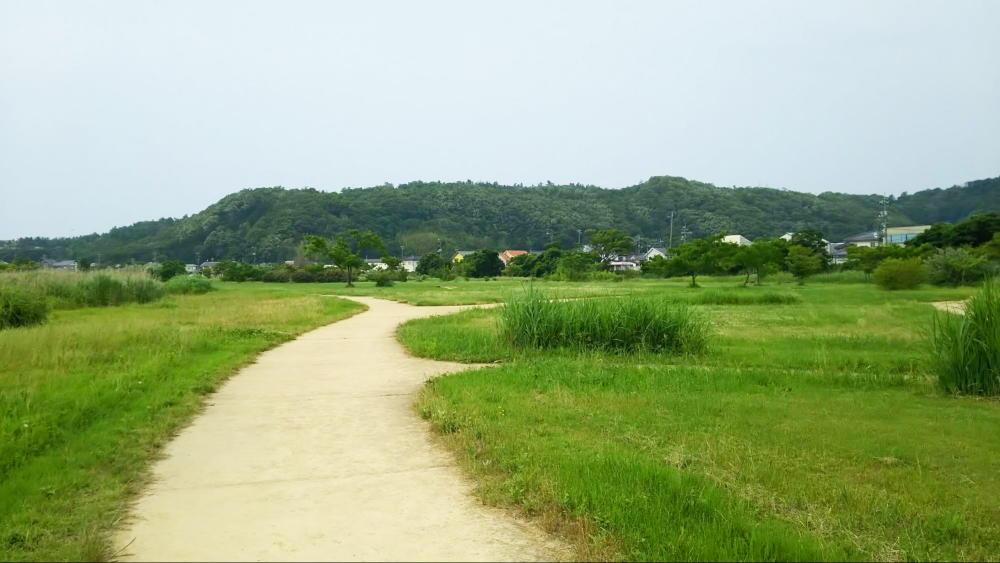 重箱緑地公園