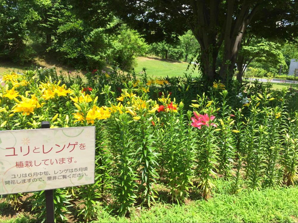 新潟県立植物園