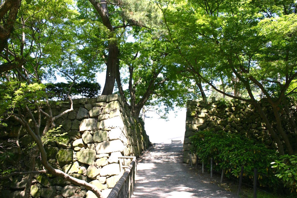 岡崎公園9