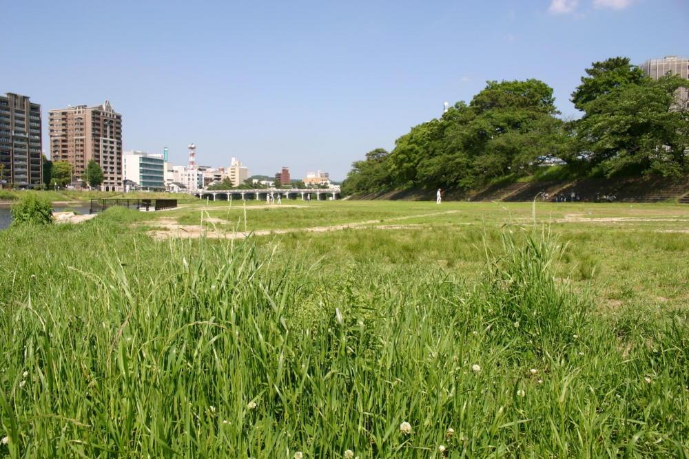 乙川河川緑地