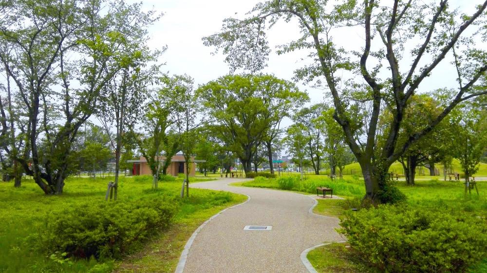桜の森公園