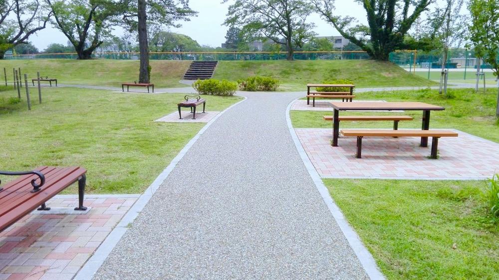 桜の森公園12