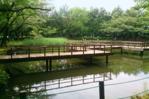鶴ヶ島市運動公園