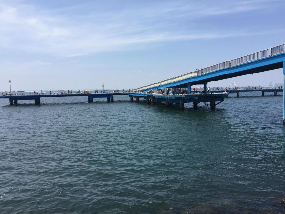 養老川臨海公園