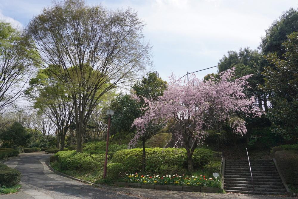 厚別川緑地