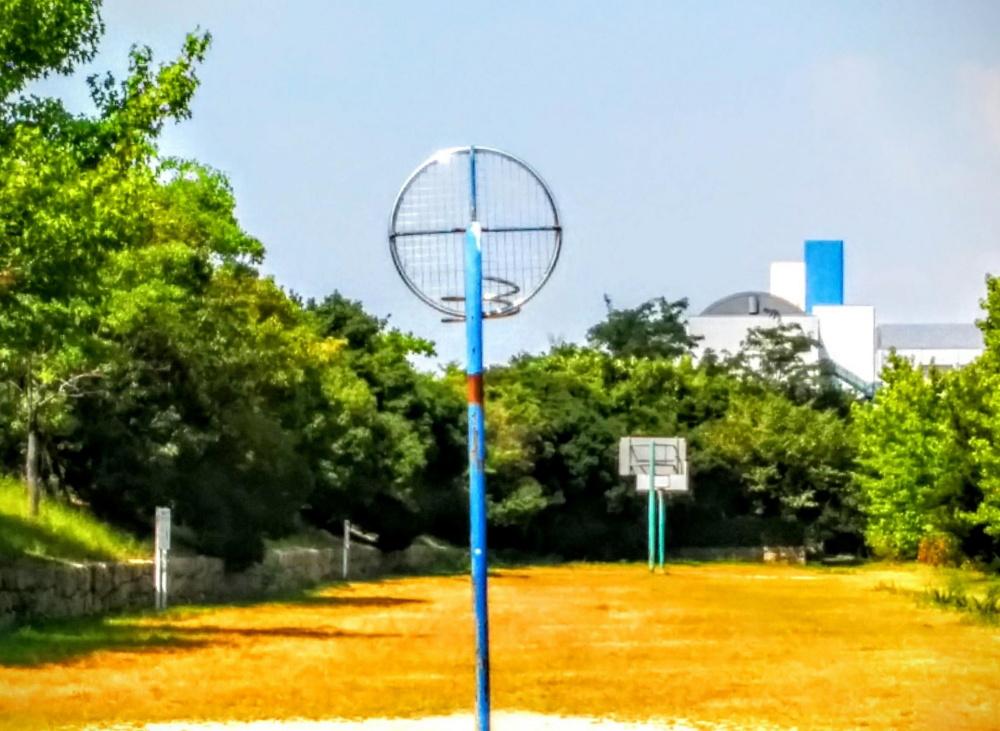 シティヒル東緑地
