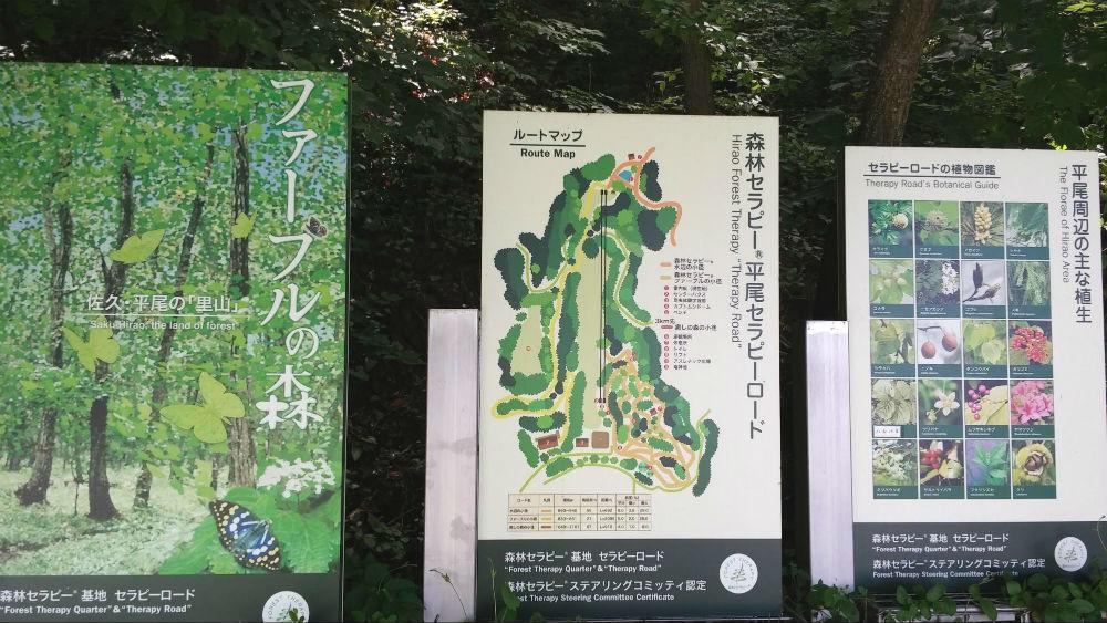 【春〜夏】平尾山公園