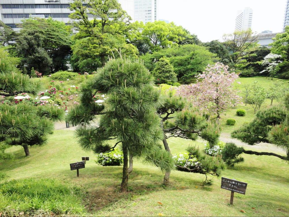 旧芝離宮恩賜庭園