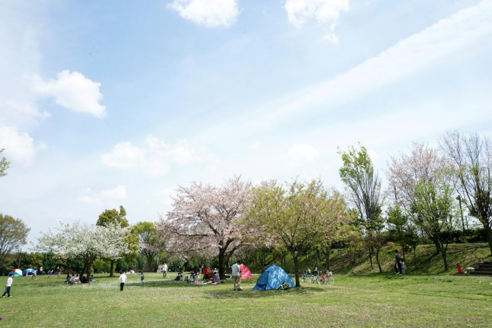 長坂谷公園