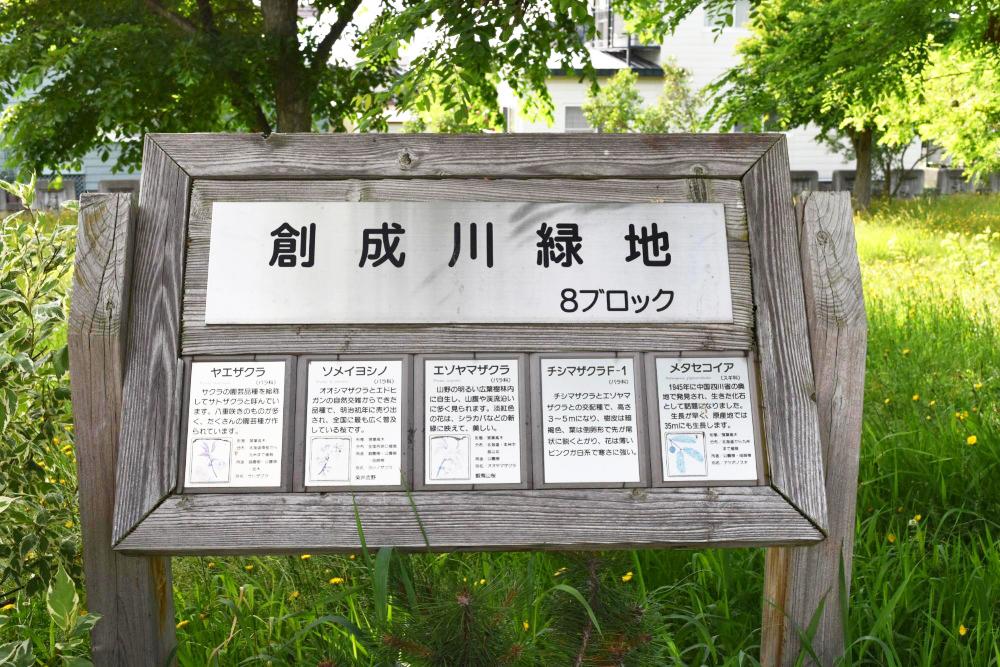 創成川緑地