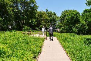 富丘西公園