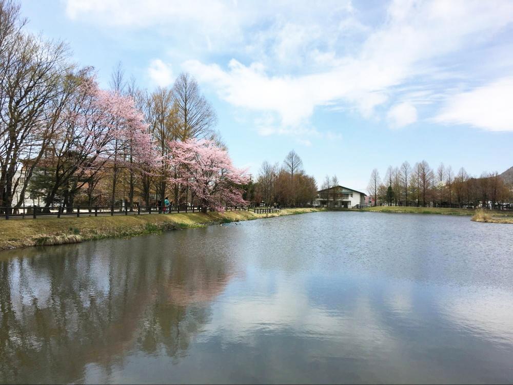 矢ケ崎公園
