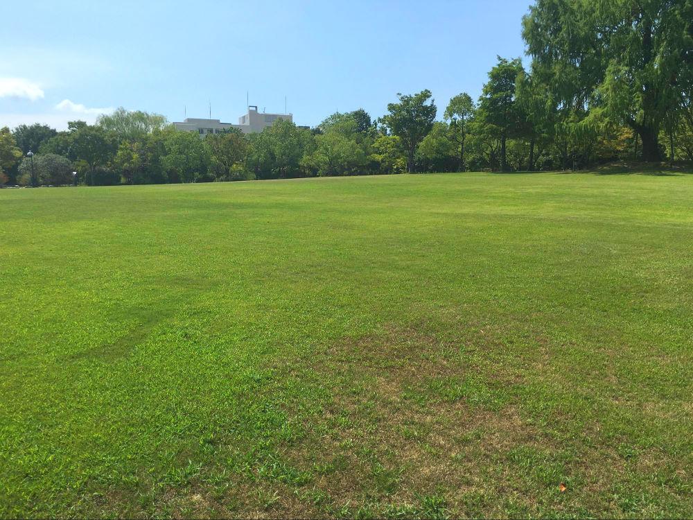 兵庫県立がんセンター内緑地帯