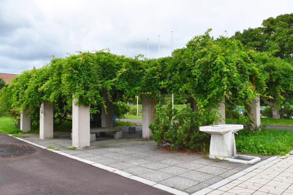 北海道立野幌総合運動公園