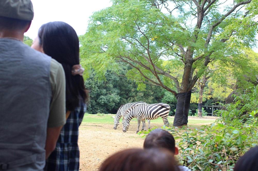 豊橋総合動植物公園